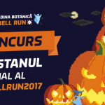 Пятница 13-е: объявлен конкурс «Официальная тыква HellRun 2017»