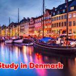 Студенты из Молдовы могут претендовать на участие в стипендиальной программе правительства Дании