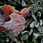 Со следующей недели в Молдове резко похолодает