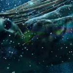 Новое видео: Imagine Dragons — Whatever It Takes