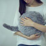Заменитель кота: В Японии создали хвостатого робота-подушку Qoobo