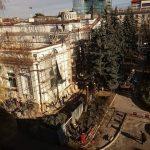 В Кишиневе возле Органного зала спилили многолетние ели