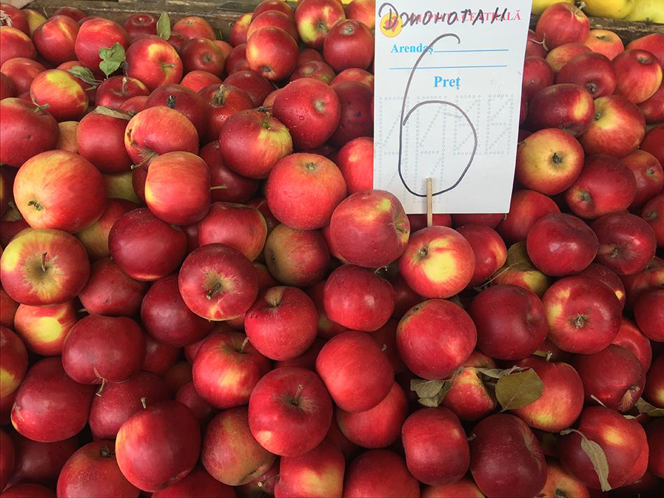 информация картинки сорта яблок джонатан время ареста торнадовцев