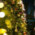В кишиневском парке Долина роз установят новогоднюю елку