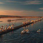 Маршрут на выходные: 10 мест на юге Молдовы, которые нужно увидеть