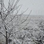 Теперь точно зима: на Севере Молдовы выпал снег