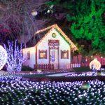 В воскресенье на Рождественской ярмарке разыграют ценные призы