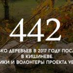 Цифра дня: сколько деревьев в 2017 году посадили в Кишиневе участники и волонтеры проекта Verde.md