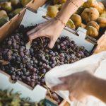 В Арабских Эмиратах начали продавать молдавский виноград