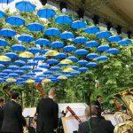 Фото дня: День Европы в парке им. Штефана чел Маре