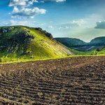 В Молдове стартует фотоконкурс «Вики любит Землю»