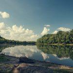 Видео: берег Днестра летом 2018 в объективе Игоря Сырбу