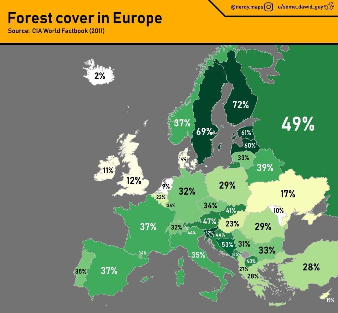 сколько процентов россии занято лесом