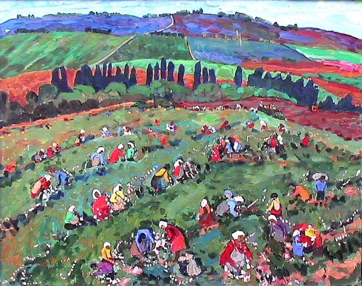 Долина Роз в Кишинёве. 1980 год